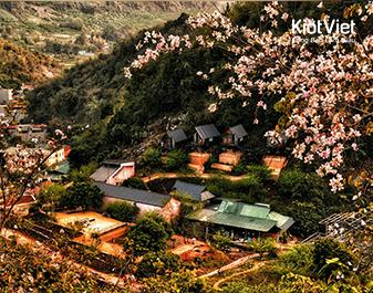 Homestay Phố Núi Tình Yêu - Phong cảnh hữu tình đẹp nên thơ